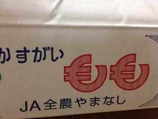 かすがい DB.JPG