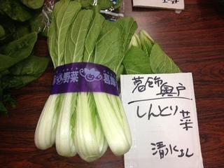 しんとり菜.JPG