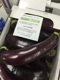 なすピッツア.JPG