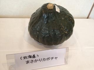 まさかりかぼちゃ.JPG