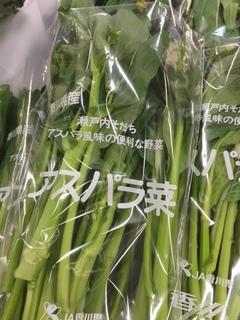アスパラ菜.JPG