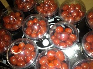 オランダ産ミニトマト.JPG