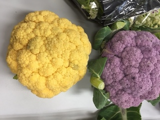 オレンジカリフラワー 紫、.JPG