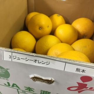 ジューシーオレンジ.JPG