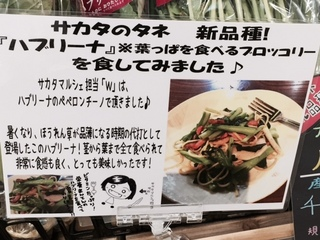 ハブリーナ レシピ.JPG
