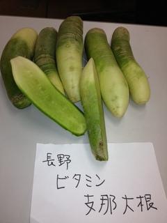 ビタミン支那大根 長野.JPG