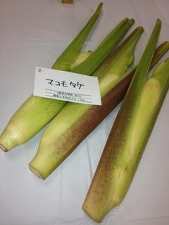 マコモタケ.JPG
