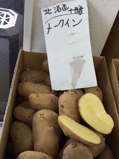メークイン北海道.JPG