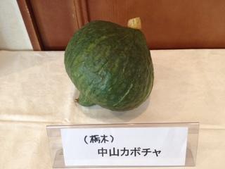 中山かぼちゃ.JPG