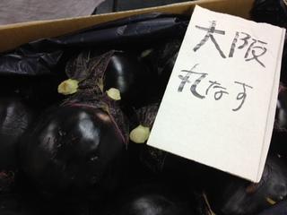 丸茄子大阪.JPG