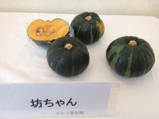 坊っちゃんかぼちゃ.JPG