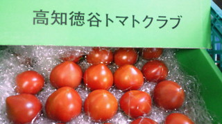 徳谷tomato.jpg