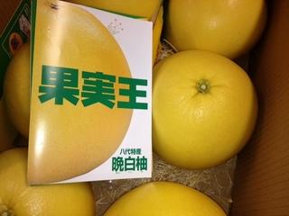 晩白柚.JPG