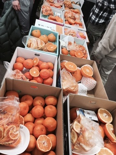 柑橘展示.JPG