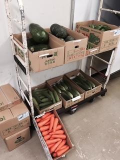 沖縄野菜 展示2.JPG