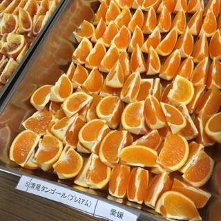 清見タンゴール試食.JPG