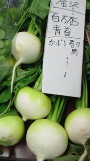 石川県百万石かぶ.jpg