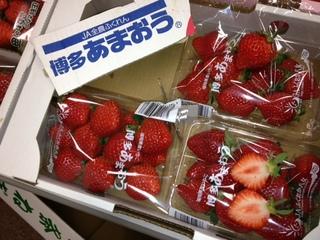 福岡産 あまおう.JPG