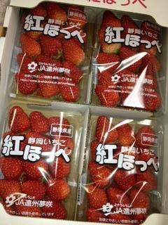 紅ほっぺ 静岡.JPG