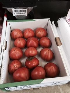 群馬フルーツトマト .JPG