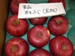青森 早生ふじ.JPG