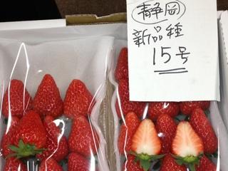 静岡産 新品種15号.JPG