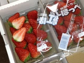 静岡産 紅ほっぺ.JPG