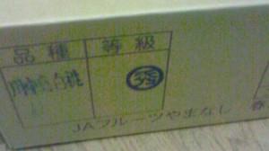 NEC_0689.jpg